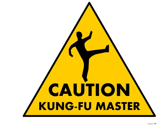 CAUTION_kung_fu_master_by_whopper1989