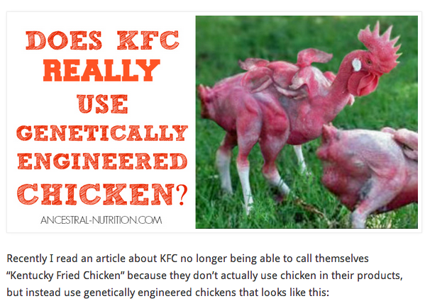 Kfc headless chicken farm - photo#13