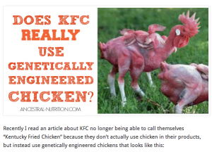 Does KFC use genetically modified chicken